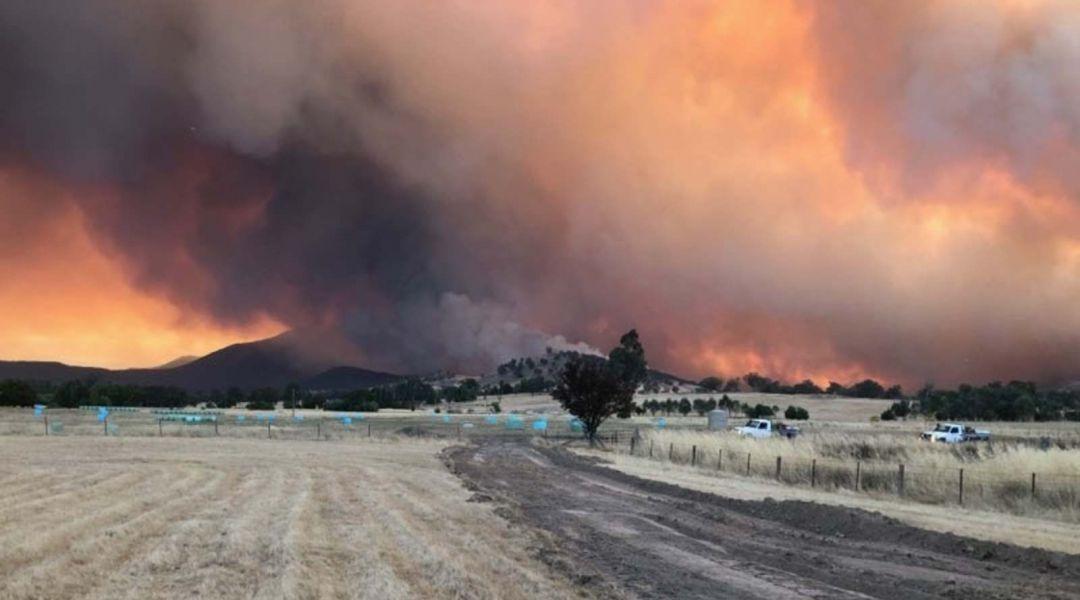 Pronti 573 cannoni da neve per salvare dalle fiamme i 2 più importanti ski resort d'Australia