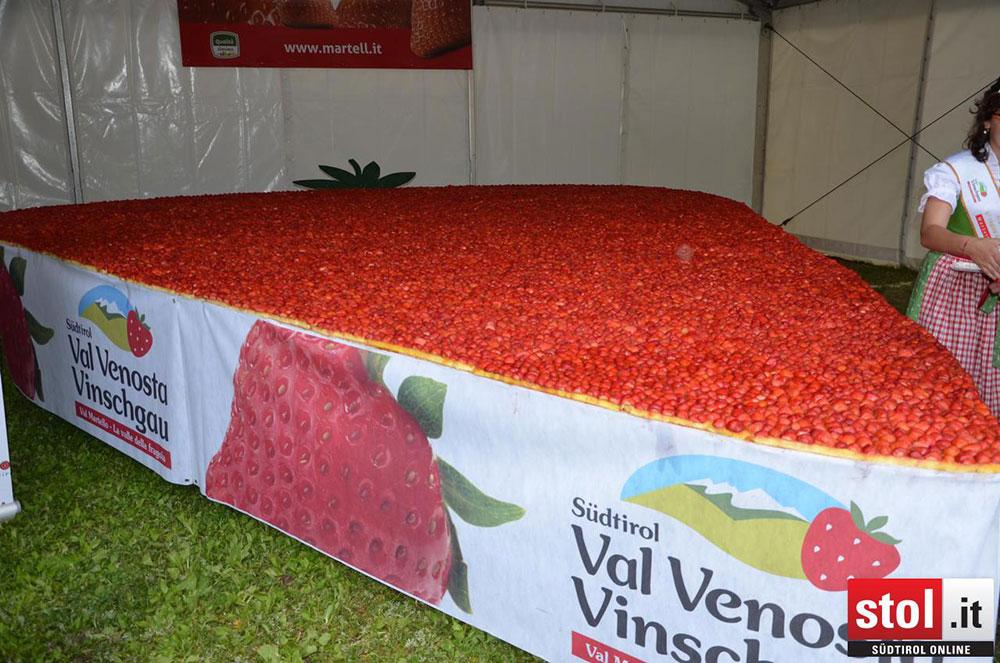 Val Martello, una torta di fragole di 25 mq da il via alla Festa della Fragola 2016