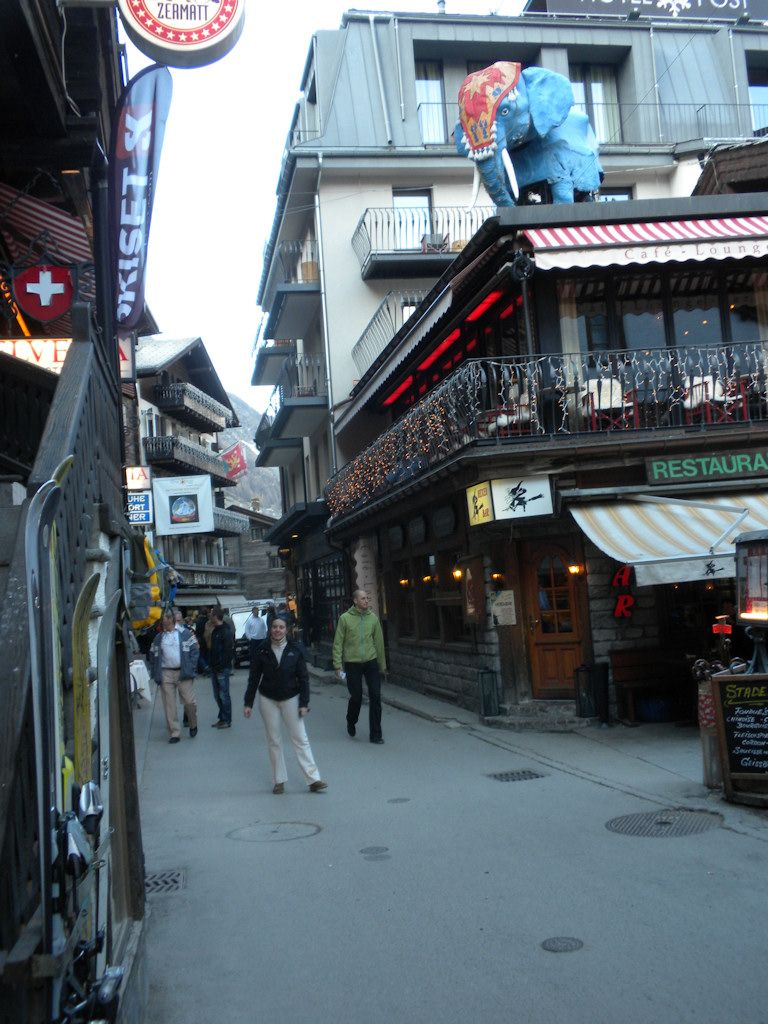 cinghialotto si prepara per il saturday night a Zermatt