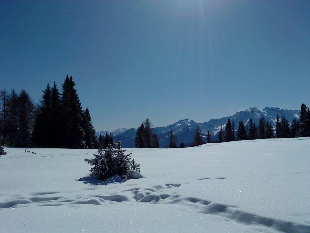 20.02.2010 Torgnon