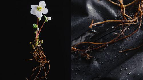 Goldwin lancia un pacchetto outerwear realizzato con un nuovo tessuto in nano fibre
