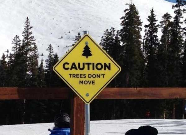 caution tree dont move