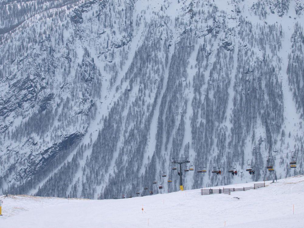 La seggiovia Testa Bassa con un mare di neve e boschi per sfondo.