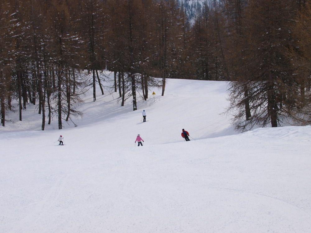 Si rientra nel bosco nella parte finale della Combette e della Piccolo Alpino.