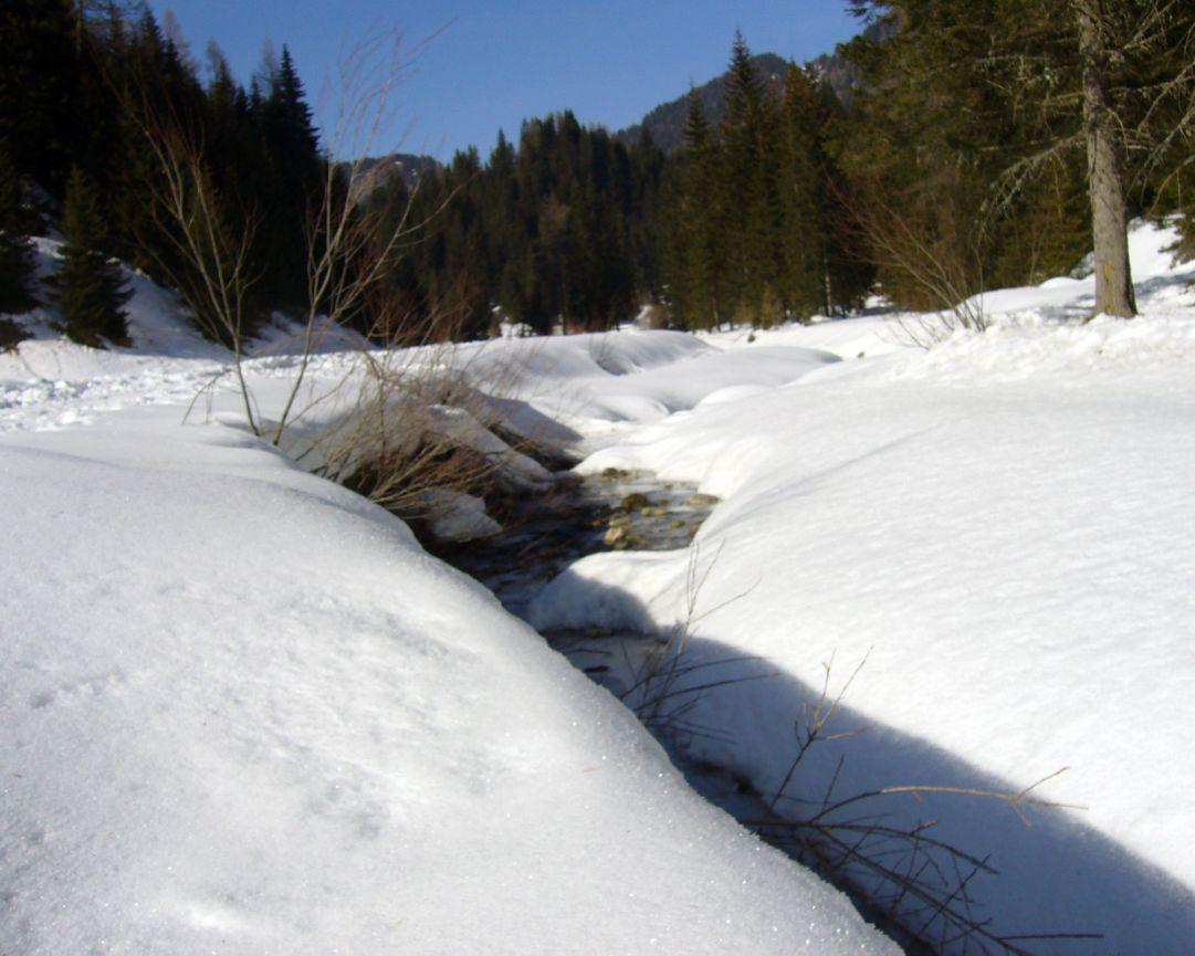Sotto la neve di Palafavera