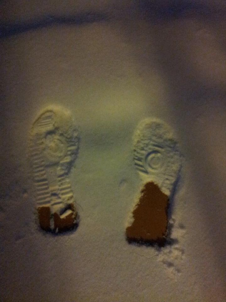 Le impronte sulla neve. . .