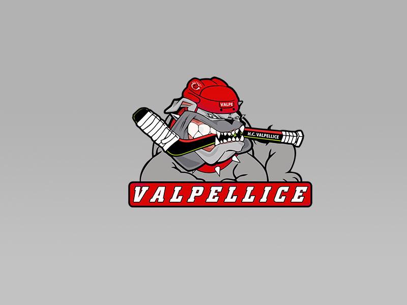 Alps Hockey League: il Valpe chiede chiarezza e il mantenimento dei diritti sportivi