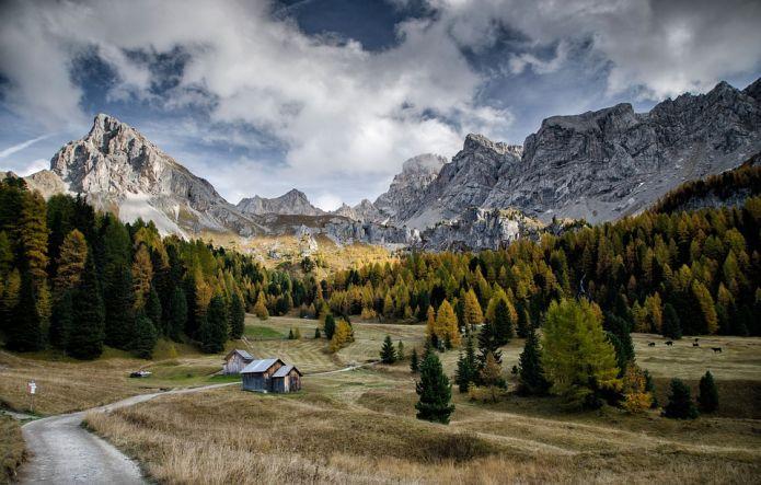 Trentino: 5 eventi enogastronomici da non perdere (dal 31 luglio al 7 agosto)