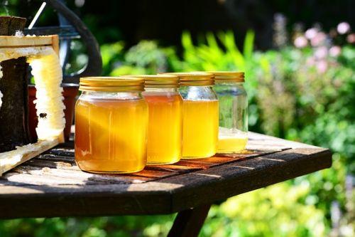 Miele di alta montagna: la dolcezza delle Alpi
